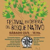 Festival en defensa del Bosque Nativo